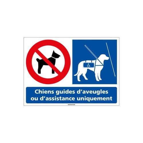 panneau chiens interdits sauf chiens guides d'aveugles - pvc