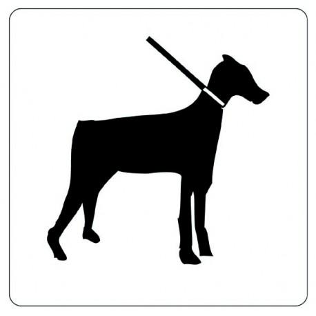Pictogramme - Interdit aux chiens